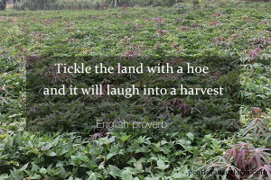 tickle-the-land-with-a-hoe-and-it-will-laugh-into-a-harvest