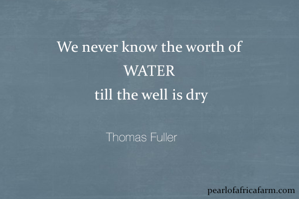 We never know the worth of water till the well is dry